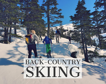 Alaskan charters back-country skiing image