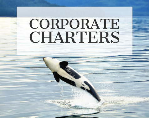 Corporate team building on custom Alaska boat charters