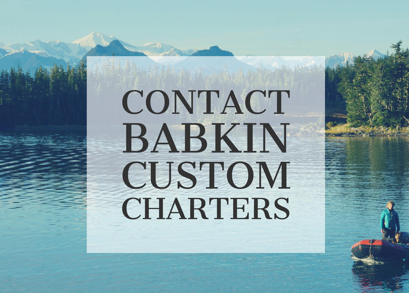 Babkin Custom Charters Prince William Sound Contact Header image