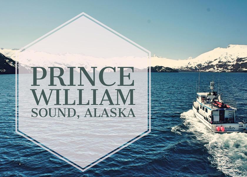 Prince william sound custom charters babkin charters alaska for Anchorage fishing charters